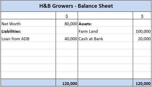 H&B Growers Balance Sheet